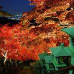 神奈川県大山寺の紅葉の見頃は?見所やアクセスをチェック!